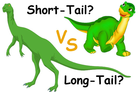 Keywords-vs.-Longtail-Keywords,-What-The-Difference-480
